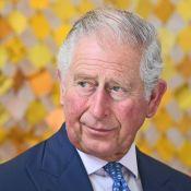 Le Prince Charles inquiet pour le bébé du prince Harry et Meghan Markle