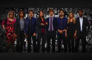 Esprits criminels s'arrête : La saison 15 sera la dernière