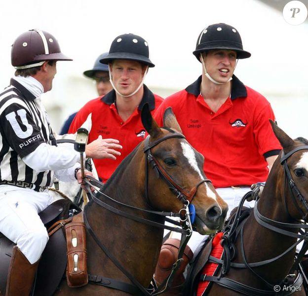 Le prince Harry et le prince William se sont battus côte-à-côte lors d'un match de polo de charité le 6 juin 2009