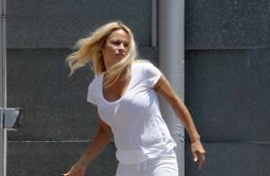 Pamela Anderson a définitivement perdu... tout sens du ridicule !
