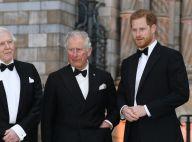 Prince Harry : En soirée sans Meghan Markle, il croise son ex Ellie Goulding