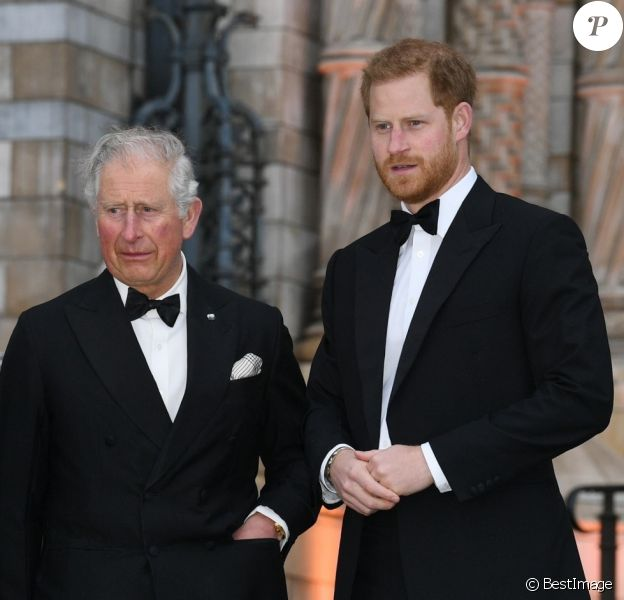 "Le prince William, duc de Cambridge, Sir David Attenborough, le prince Charles, prince de Galles, le prince Harry, duc de Sussex, à la première de la série Netflix ""Our Planet"" au Musée d'Histoires Naturelles à Londres, le 4 avril 2019."