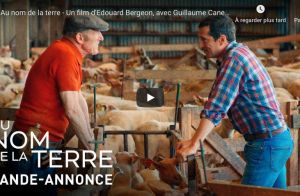 Guillaume Canet se vautre à vélo : sa vidéo amuse ses amis stars