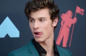 MTV Video Music Awards : Camila Cabello et Shawn Mendes, amoureux récompensés