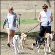 Jessica Simpson en pleine promenade avec ses chiens et son ami et coiffeur, Ken Paves
