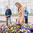 La reine Maxima des Pays-Bas en visite sur une exploitation horticole à Honselersdijk le 27 mars 2020, en pleine crise du coronavirus.