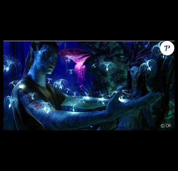 Des images d'Avatar !