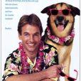 Mark Harmon tenait en 1987 le rôle principal de la comédie Summer School, de Carl Reiner.