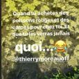 Faustine Bollaert n'a pas retrouvé ses poissons, story Instagram du 16 juin 2020