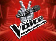 The Voice : Un ex-gagnant de Danse avec les stars devient coach !