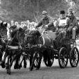 Le prince Philip, duc d'Edimbourg sur un attelage lors de l'exhibition ''Royal Windsor Horse Show'' le 16 mai 1989.