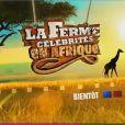 Première bande-annonce de la Ferme Célébrités en Afrique