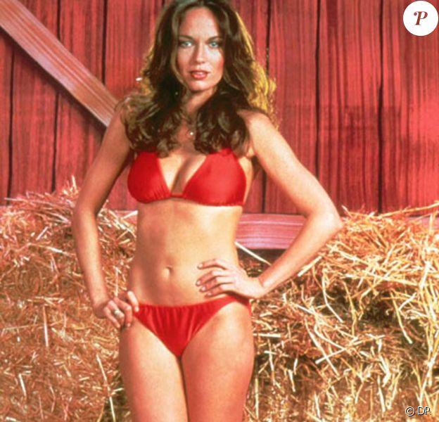 La très sexy Catherine Bach à l'époque de la série Shérif, fais moi peur !