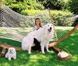 Laeticia Hallyday avec ses chiens en juin 2001<br />