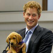 Le prince Harry : Il vous présente sa nouvelle moitié !