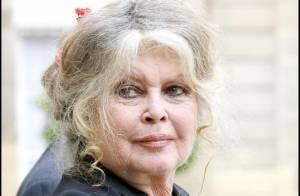 Découvrez la campagne choc et dénudée de la fondation de Brigitte Bardot !