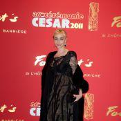 Emmanuelle Béart, Léa Seydoux... Découvrez les plus belles tenues des César !