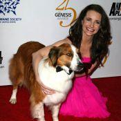 Kristin Davis et Leona Lewis réunies pour un événement qui a du chien !