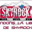 Affiche de soutien à Skyrock glanées sur la toile, avril 2011