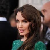 Angelina Jolie : nouvelle égérie Louis Vuitton ?