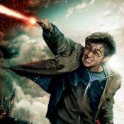 Harry Potter et les Reliques de la Mort 2 : Les fantastiques affiches...