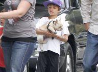 Cruz et Romeo Beckham, des enfants qui ont du chien