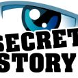Benjamin Castaldi anime Secret Story sur TF1.