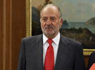 Juan Carlos d'Espagne, opéré et de retour à la Zarzuela, entame sa convalescence