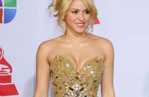 Shakira reine de beauté et Demi Lovato ultra-décolletée aux Latin Grammy Awards