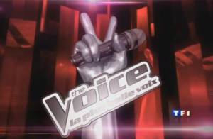 The Voice : L'aventure commence... Le casting est lancé