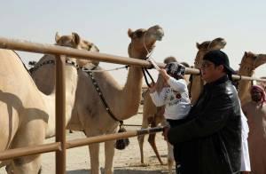 Steven Seagal, en famille, à la rencontre des plus beaux chameaux
