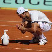 Roland-Garros 2012 : Novak Djokovic délire devant Bob Sinclar et Serena Williams