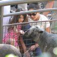 Katie Holmes, sa fille Suri et sa mère Kathleen se sont rendues au zoo de New York, le 11 juillet 2012 - Suri Cruise donne à manger à un mouton