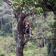 Le prince William et son épouse Kate Middleton avait une vue imprenable sur la forêt tropicale de Sabah sur l'île de Borneo le 15 septembre 2012