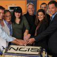 La saison 9 de NCIS est actuellement diffusée sur M6. Le casting a fêté le 200e épisode