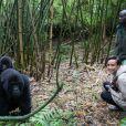 """Sonia Rolland était en voyage humanitaire au Rwanda, son pays d'origine, fin novembre - début décembre 2012 pour le compte de son association Maïsha Africa. Visite de la famille des gorilles """"Sabignwo""""."""