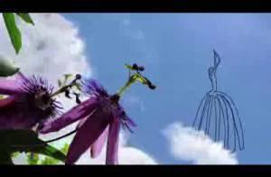 VIDEO : Découvrez 'L'amoureuse', le nouveau clip de Carla Bruni !