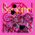 Pochette de l'album Vengeance de Benjamin Biolay, sorti en novembre 2012.