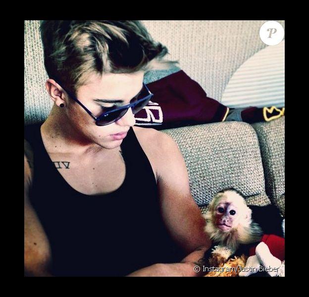 Justin Bieber pose avec son petit capucin, Mally, reçu en cadeau pour ses 19 ans en mars 2013.