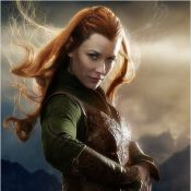 Le Hobbit - La Désolation de Smaug : Un cadeau pour les fans