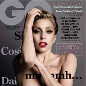 Lady Gaga dévoile un téton rouge et fait son entrée au Louvre