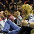Shakira et Gerard Piqué très amoureux au Palau devant le match d'Euroligue entre Barcelone et Fenerbahce le 30 novembre 2013