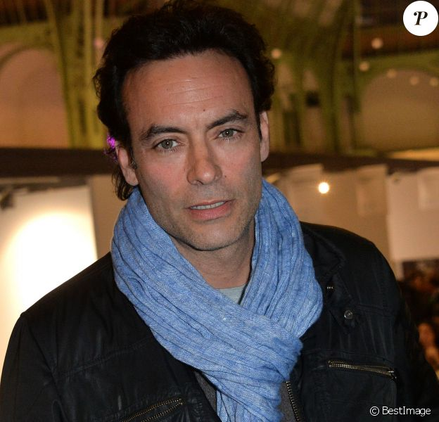 """Anthony Delon lors de l'inauguration de l'exposition """"Art Paris Art Fair"""" au Grand Palais à Paris le 26 mars 2014"""