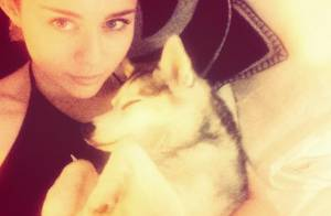 Miley Cyrus : La mort de son chien, un coup dur en pleine tournée