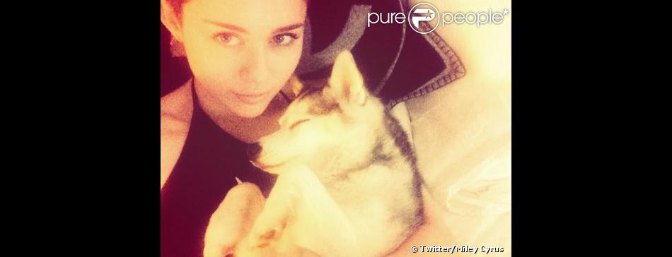 Miley Cyrus, dévastée par la mort de son chien Floyd, le 2 avril 2014.
