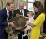 Kate Middleton et William face au vide en Australie, George face à un wombat