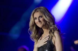 PHOTOS : L'exceptionnel show de Céline Dion pour les 400 ans de Québec !