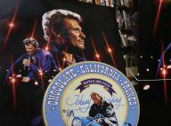 Johnny Hallyday : L'incroyable collection d'un fan adjugée une petite fortune
