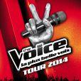 L'affiche de The Voice Tour