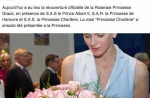 Charlene de Monaco, enceinte et épanouie : 1re sortie publique de sa grossesse